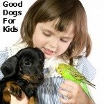 Dogs Good with Children