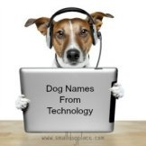 Dog Names Based on Technology