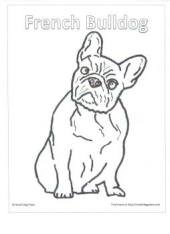 French Bulldog Coloring Page