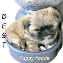 Best Puppy Foods
