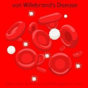 vonWillebrand's Disease