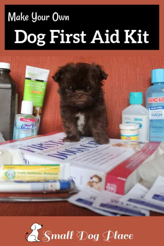 Canine First Aid Kit Pin