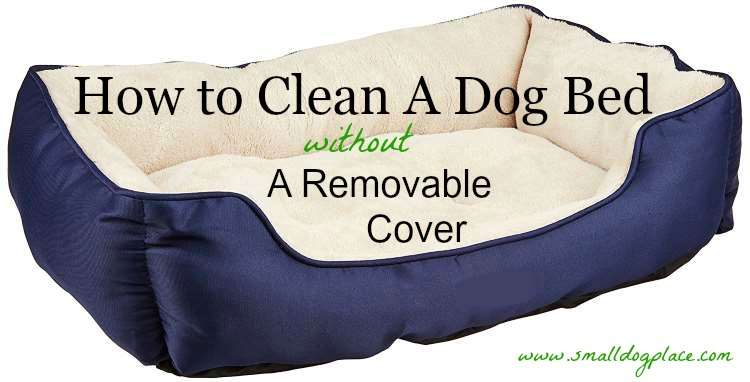 how to clean a dog bed that has no removable cover. Black Bedroom Furniture Sets. Home Design Ideas