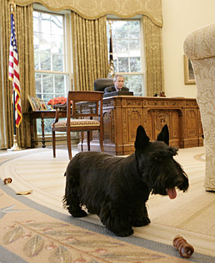 Barney in the Oval Office