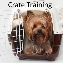 Link to Crate Training Article