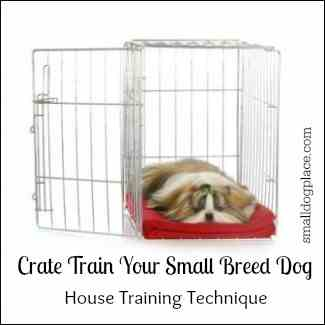 Crate Training Small Breed Dogs