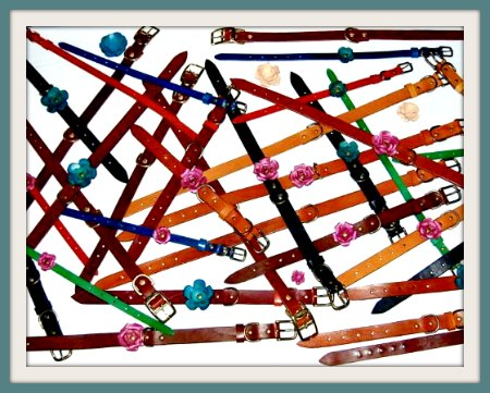 Assortment of Leather Dog Collars