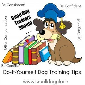 Good Dog Trainers Should be Concise, offer Compensation, be Confident, be Consistent, and be Congenial
