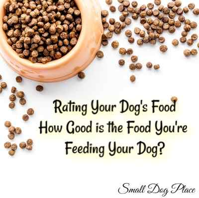 Dog Food Rating Scales