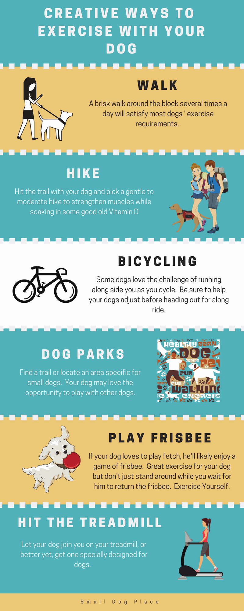 Creative Ways to Exercise Your Dog Infographic