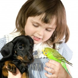 Here is a young child with a puppy and a bird.