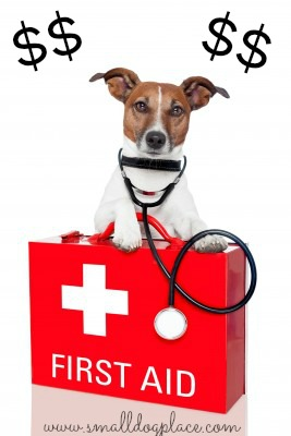 Pet store puppies can be ill resulting in large vet bills.