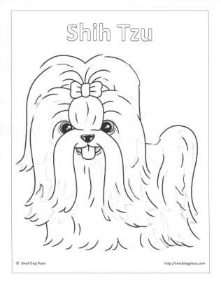 Shih Tzu Puppy Coloring Page