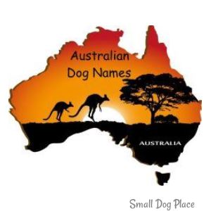 Dog Names by Country of Origin