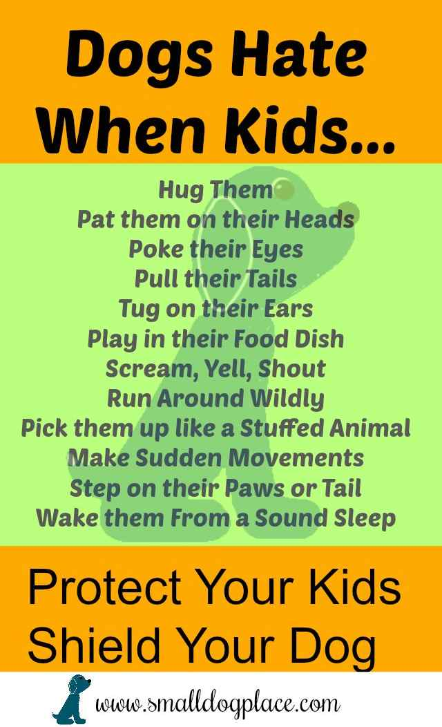 Children and Dog Safety:  Checklist of things that Dogs Don't Like