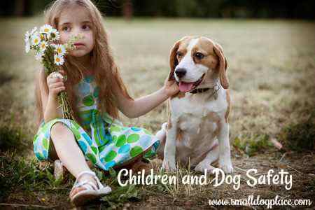 A small girl and her dog are enjoying each other's company in a safe way.