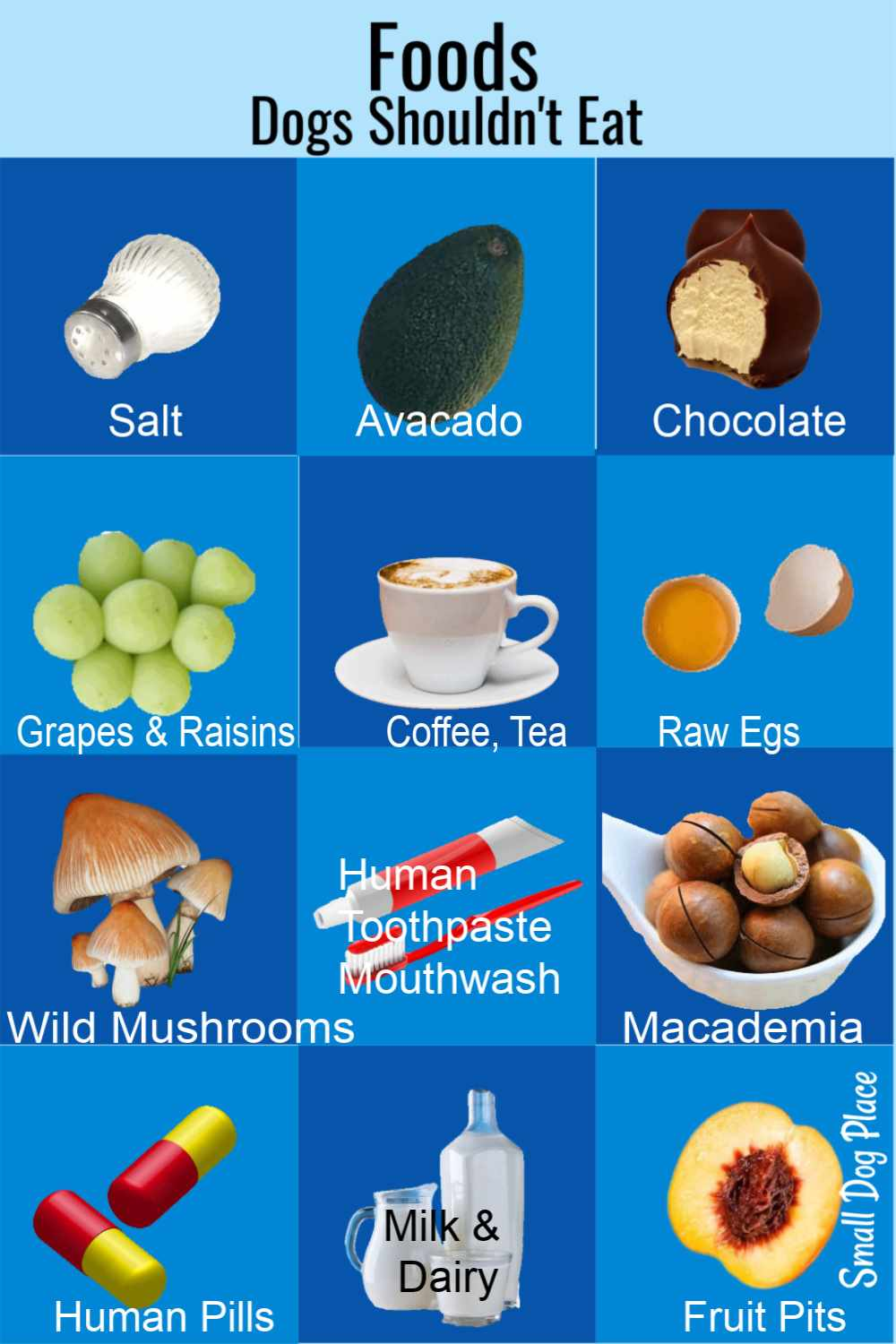 Infographic of foods and substances that dogs should not eat.