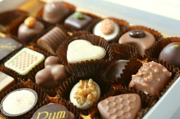 Chocolate is not a food that dogs should eat.  Showing is a box of chocolate.