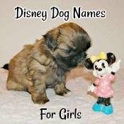 Disney Dog Names for Girls