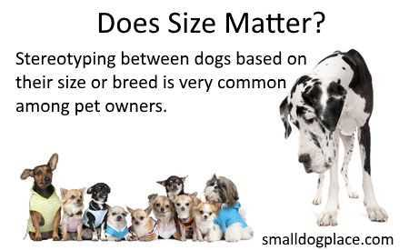 Size Matters When it concerns to aggression.