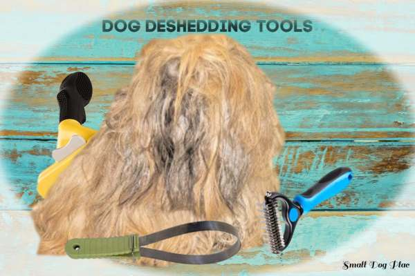Collage of dog hair and deshedding tools