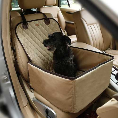 The safest way for a dog to travel is securely fastened in a car seat.