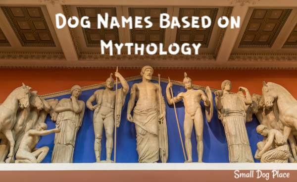 Great Dog Names from Mythology