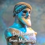 Dog Names from Mythology Link