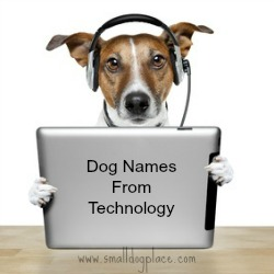 Ultimate Dog Names Resource: Index to All Puppy Names
