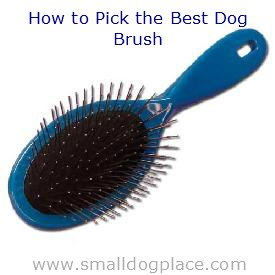 How to Pick the Best Brush for Your Dog