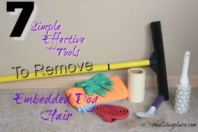 Common household tools for removing embedded pet hair