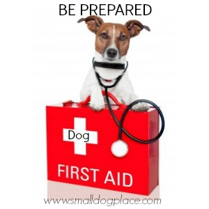 A First Aid Kit will come in handy should anything happy while on your dog friendly road trip.
