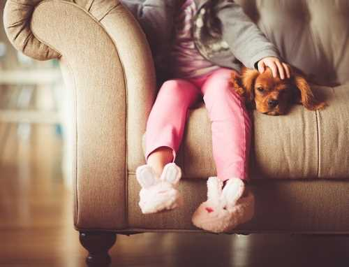 Young Girl is sitting with her puppy on a sofa.