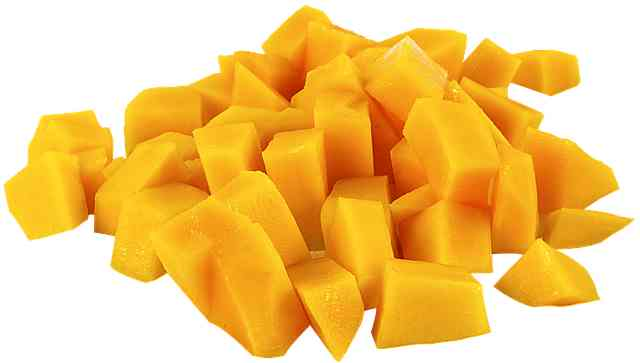 What fruits can my dog eat?  Mango