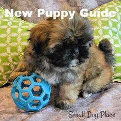 Link to our new puppy guide