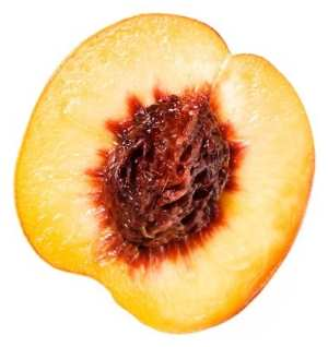 The seeds or pits of fruits like peaches are dangerous to dogs.
