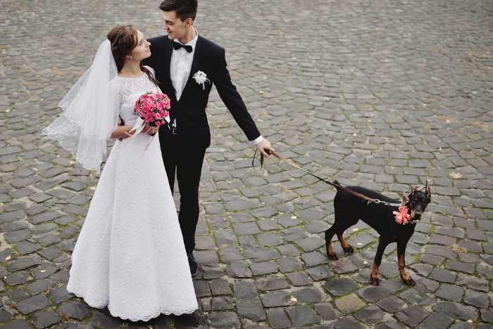 A Bride and Groom with their dog on a leash.