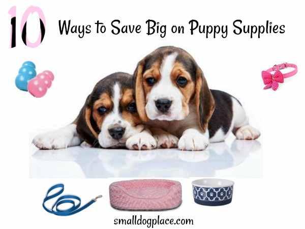 Ten ways to save big on puppy supplies.