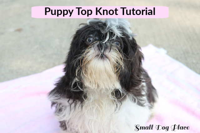 Round dog bow top knot bow fabric dog bow