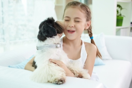 Best small breed dogs for kids