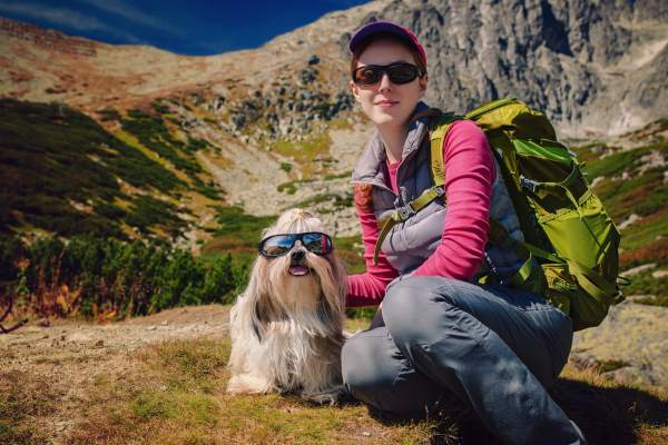Always keep a close watch on your pooch when taking a small dog up a mountain.