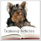 Information on Dog Training & Obedience