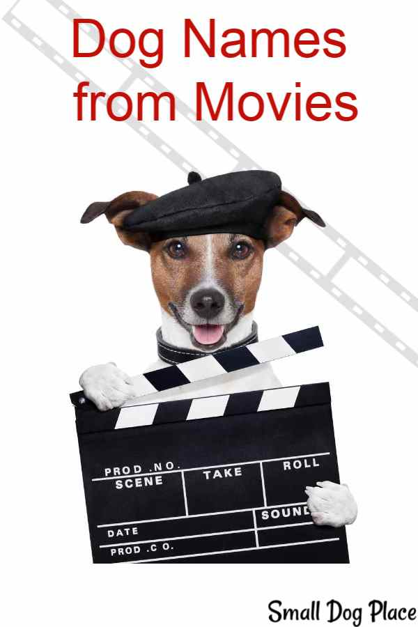 Dog Names  from Movies