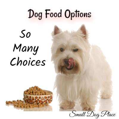 Dog Food Options:  Which type of food is right for you and your dog?