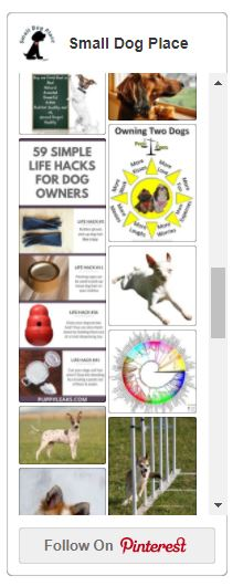 Small Dog Place's Pinterest Widget