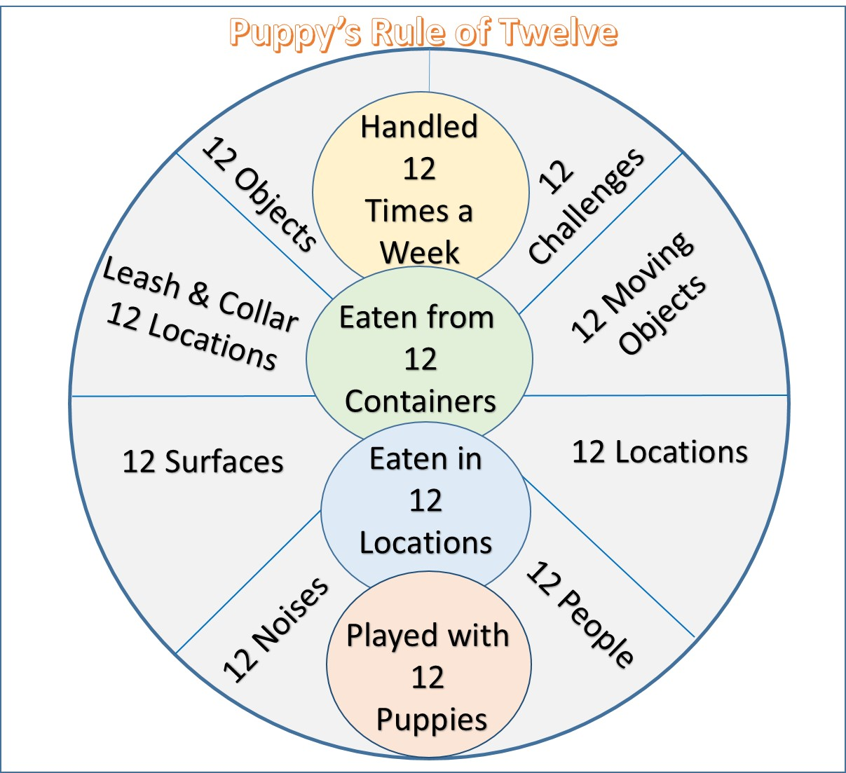 How to Socialize a Puppy:  Rule of 12