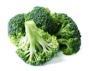 Vegetables for Dogs:  Broccoli