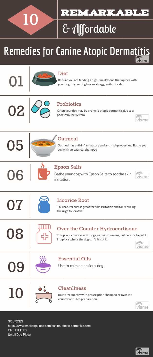 Canine Atopic Dermatitis: 10 Remarkable and Affordable Remedies Pin