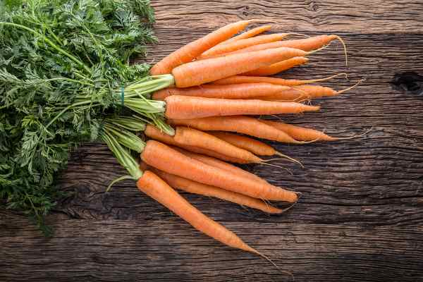 Carrots are full of vitamins with added fiber and low in calories, an excellent and essential addition to a homemade food diet.