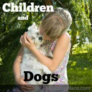 Children and Dogs:  A Match Made in Heaven